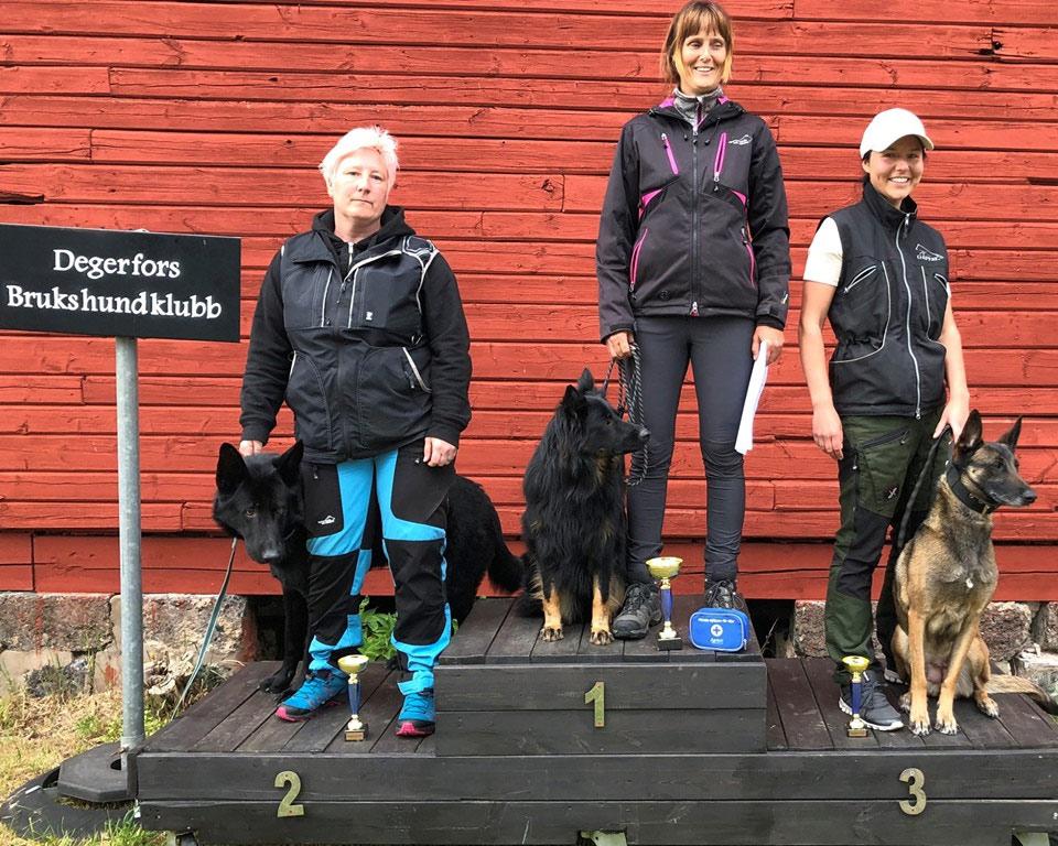 På prispallen hamnade tre av de 12 deltagande ekipagen: Segrade gjorde Anita Melitshenko med Aleix Daxi Angels, 172,5 p, uppflyttad.  Marina Ridde med Hardstyles Dunder fick 164 poäng och blev uppflyttad, och trean, Sandra Nilsson med Cobra, blev godkänd på 153,5 poäng.
