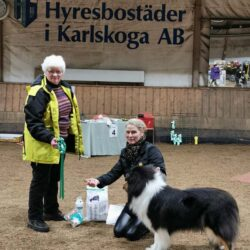 BIS Vuxen. 4. Lundecocks Black Rose. Collie lgh. Ägare: Annelie Cederlöf.
